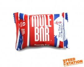 Mule Bar MegaBite Summer Pudding